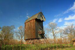 wiatrak w drewnicy 1