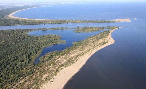 Wokół Wyspy Sobieszewskiej