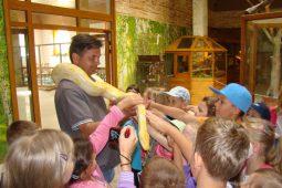 zoo egzotyczne kaszuby 1