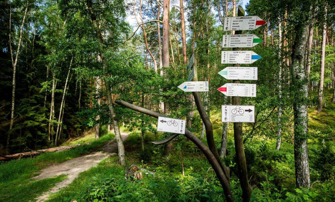 Szlaki piesze i rowerowe w PN Bory Tucholskie, fot. Pomorskie Travel /M.Ochocki
